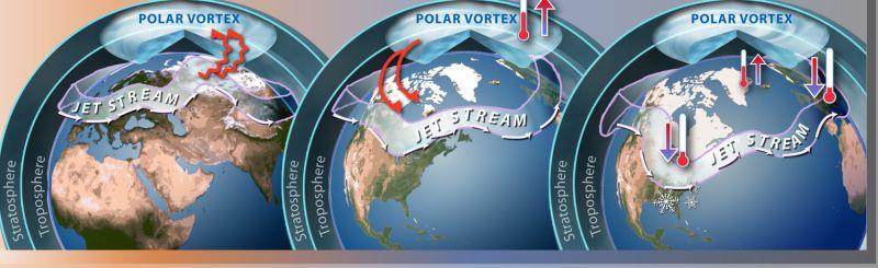 Wir polarny kontratakuje (znowu)